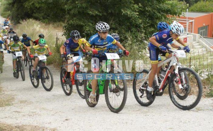 Οι βαθμολογίες σε όλες τις κατηγορίες Ποδηλασίας για το 2020